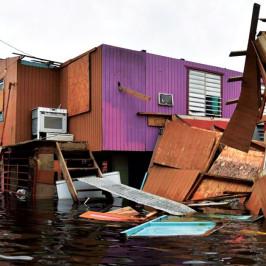 """""""Después de María, todo es desolación"""": Jorge Zijlstra desde Puerto Rico"""